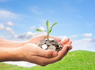 working-capital-loan
