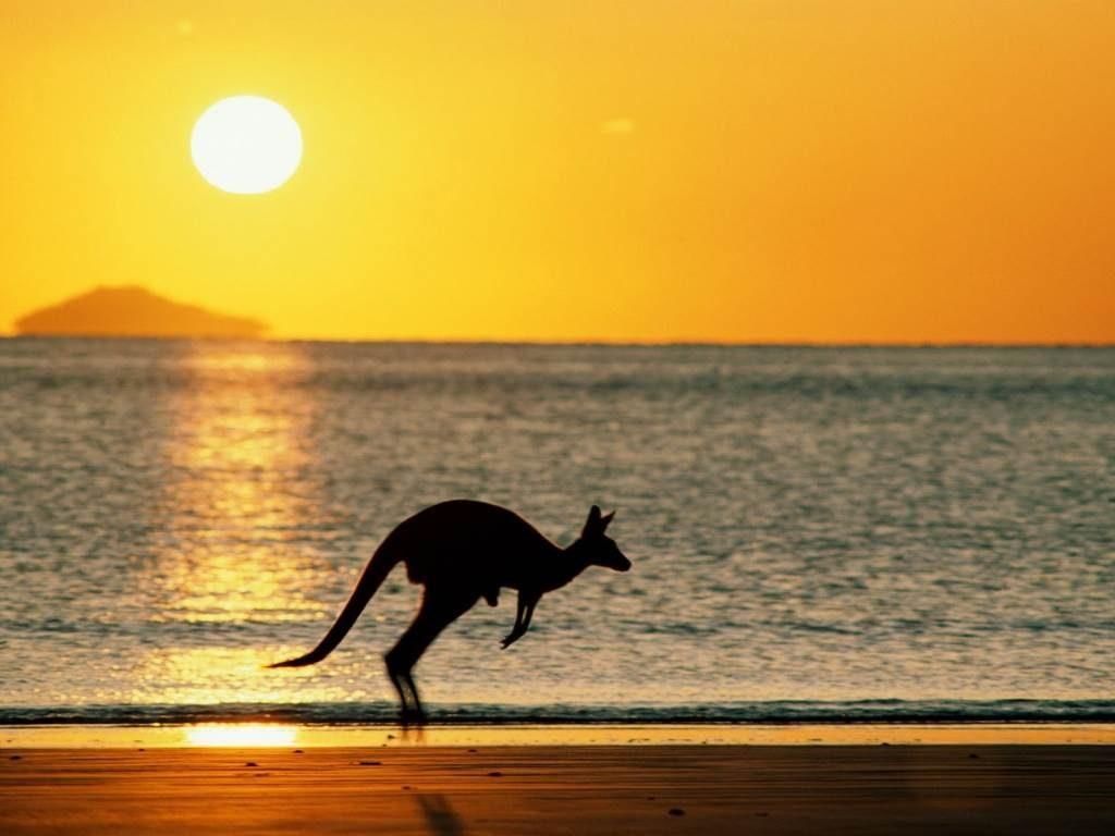 How To Speak Like An Aussie